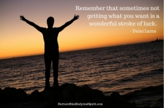 Remember that sometimes not getting what you want is a wonderful stroke of luck. – Dalai Lama