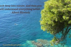 Look deep into nature, and then you will understand everything better. – Albert Einstein