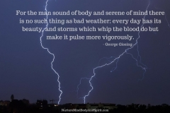 For the man sound of body and serene of mind there is no such thing as bad weather; every day has its beauty, and storms which whip the blood do but make it pulse more vigorously. – George Gissing