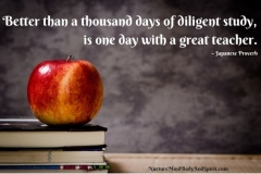 Better than a thousand days of diligent study, is one day with a great teacher. – Japanese proverb