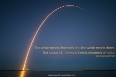 The world needs dreamers and the world needs doers. But above all, the world needs dreamers who do. –  Sarah Ban Breathnach